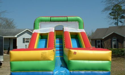 15 ft Double Slide