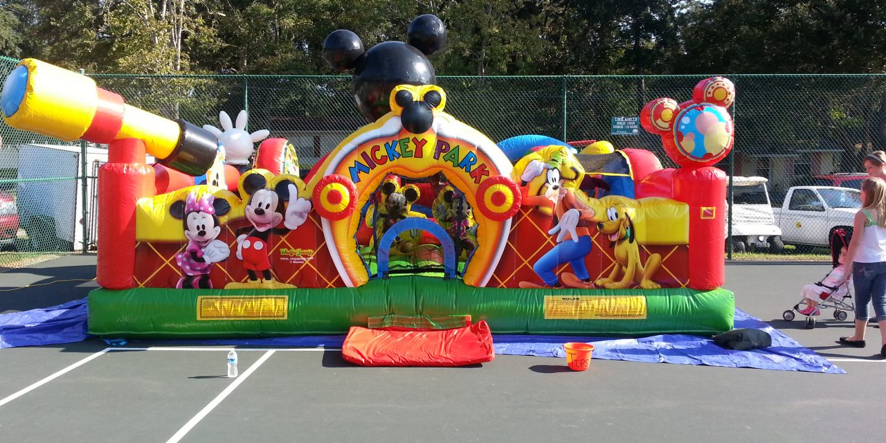Mickey Mouse Park