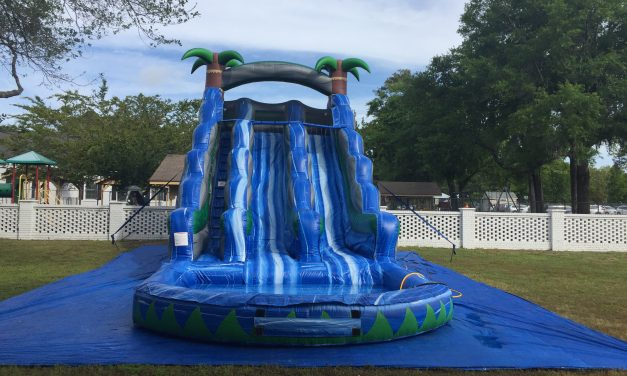 20 ft Double Water Slide