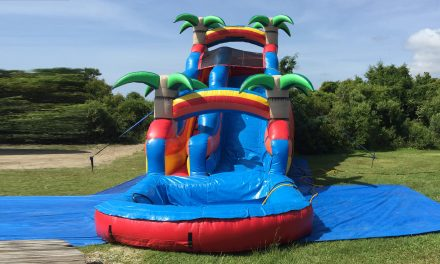 20 ft Tropical Water Slide