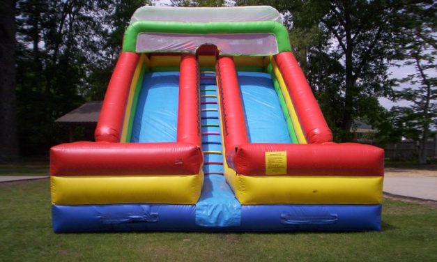22 ft Double Giant Slide