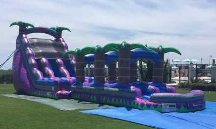 22 ft Double Water Slide with Double Slip & Slide