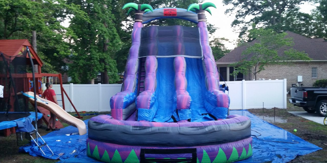 22 ft Double Water Slide